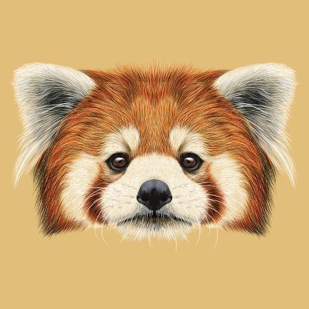 ant-art19-illustrated-portrait-of-red-panda