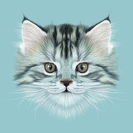 ant-art19-illustrative-portrait-of-domestic-kitten-cute-grey-tabby-kitten