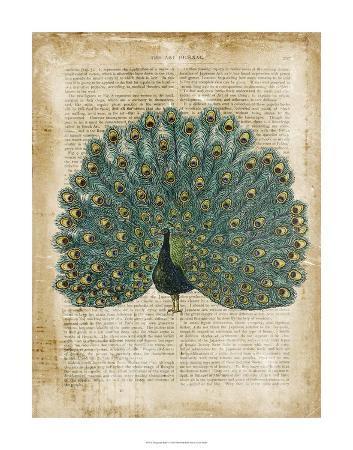 antiquarian-birds-v
