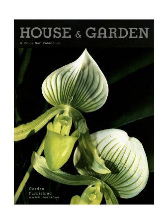 anton-bruehl-house-garden-cover-june-1934