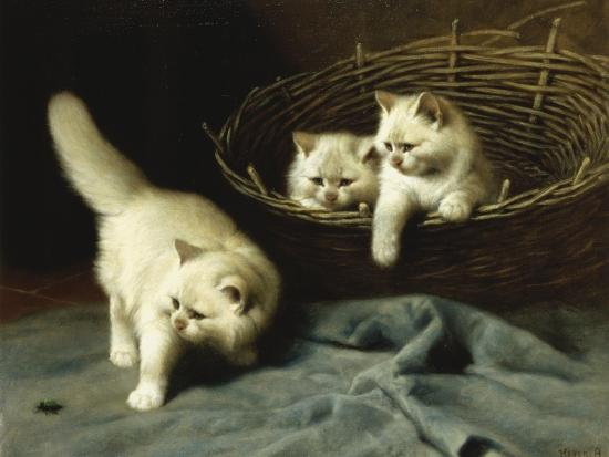 arthur-heyer-white-angora-kittens-with-a-beetle