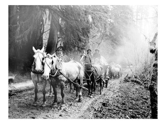 asahel-curtis-milwaukee-road-hauling-supplies-oct-24-1906