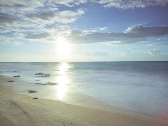 assaf-frank-sunshine-shores