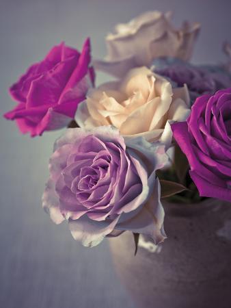 assaf-frank-vintage-rosa