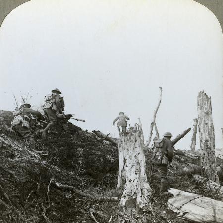 assault-in-trones-wood-somme-france-world-war-i-1916
