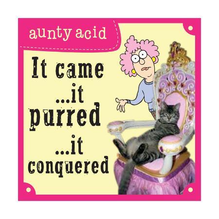 aunty-acid-cats