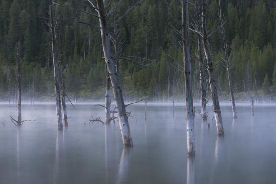 austin-cronnelly-early-morning-mist-rising-off-of-earthquake-quake-lake-in-sw-montana-near-west-yellowstone
