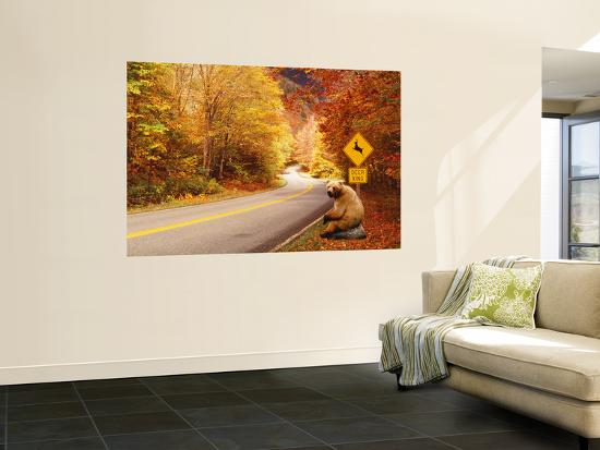 autumn-road-with-bear-at-deer-crossing-sign-vermont-usa