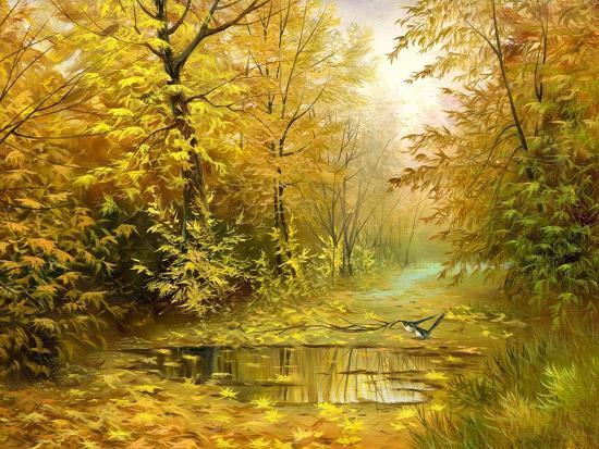 balaikin2009-pool-on-road-to-autumn-wood