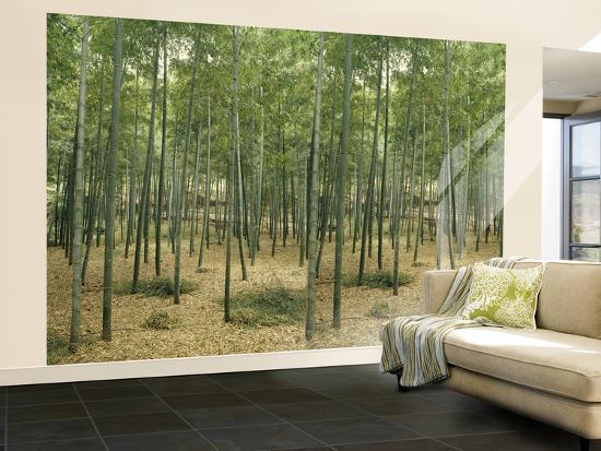 Bamboo Grove Huge Wall Mural Poster Print Wallpaper Mural at Artcom