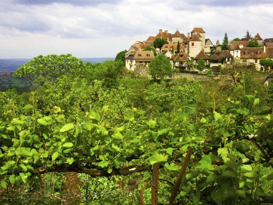 barbara-van-zanten-village-on-rocky-spur-overlooking-the-bave-valley