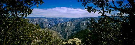 barry-herman-the-copper-canyon-is-a-group-of-canyons-in-the-sierra-tarahumara-in-the-state-of-chihuahua-mexico