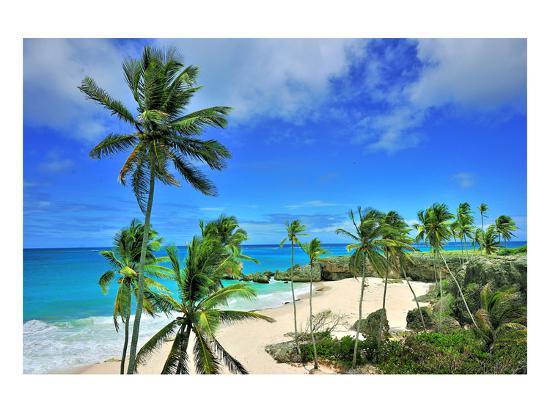 beach-at-bottom-bay-st-philip-barbados-caribbean