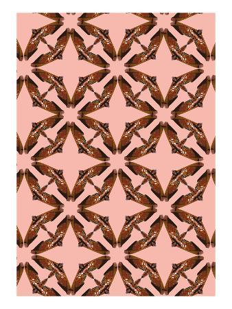 belen-mena-pink-floral-moth-tiles