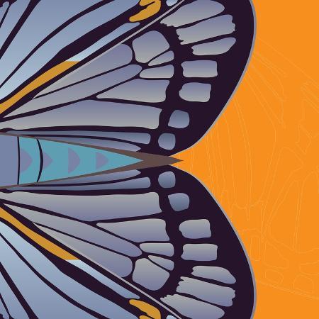 belen-mena-tangerine-iris