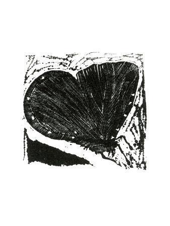 bella-larsson-dark-moth-2013