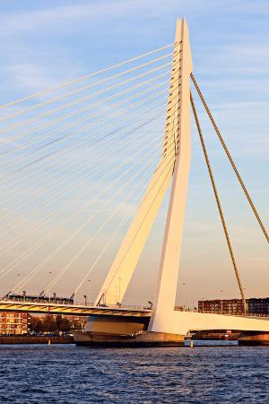 benkrut-erasmus-bridge
