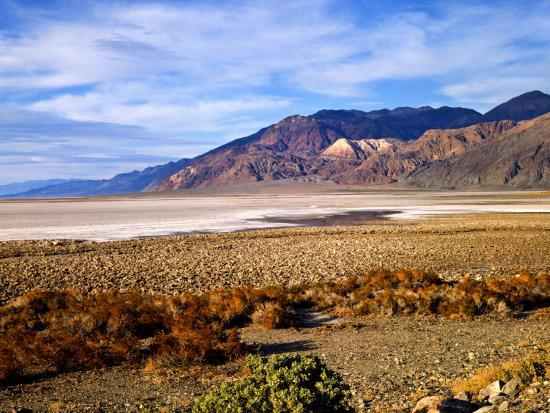 bernard-friel-mesquite-and-the-black-mountains-of-the-amaragosa-range-death-valley-national-park-ca