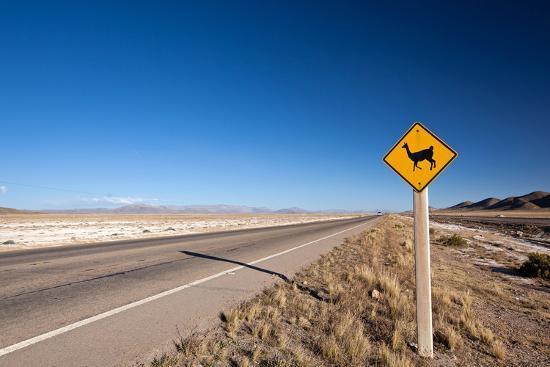 berzina-alpaca-road-sign