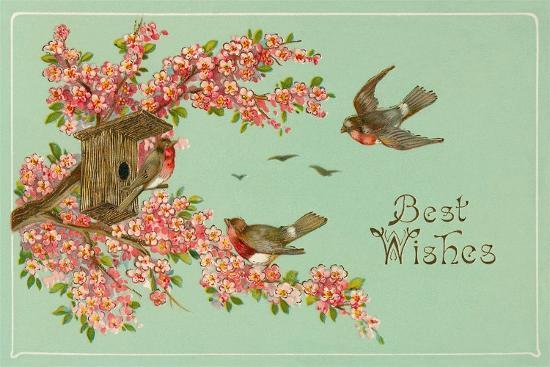 best-wishes-bird-house