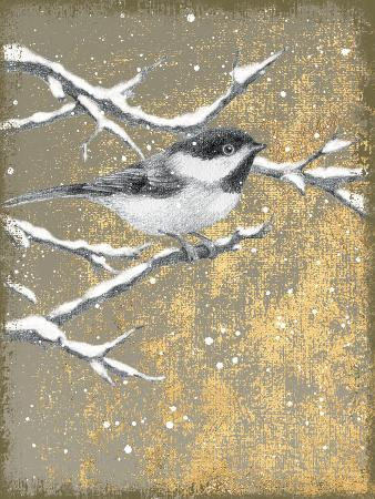 beth-grove-winter-birds-chicadee-neutral