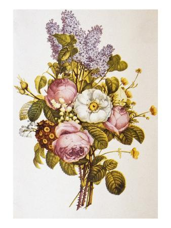 bettmann-illustration-depicting-a-bouquet-of-roses-and-lilacs