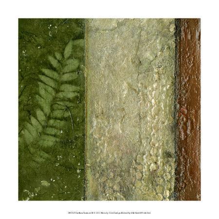 beverly-crawford-earthen-textures-ii
