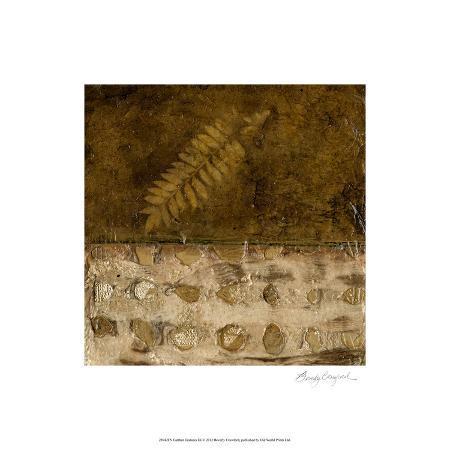 beverly-crawford-earthen-textures-ix