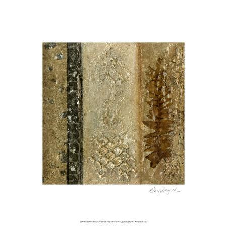 beverly-crawford-earthen-textures-vii