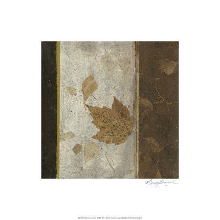 beverly-crawford-earthen-textures-xvi