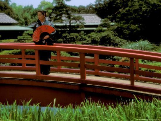 bill-bachmann-bridge-japan