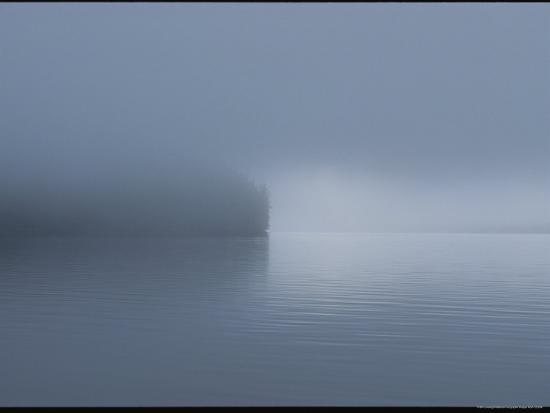 bill-curtsinger-thick-fog-hangs-over-eerily-calm-water-where-a-point-of-land-juts-out