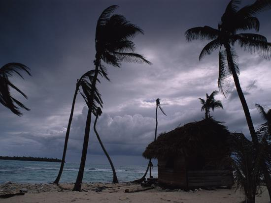bill-hatcher-a-storm-ravages-the-palm-trees-and-huts-on-glovers-reef