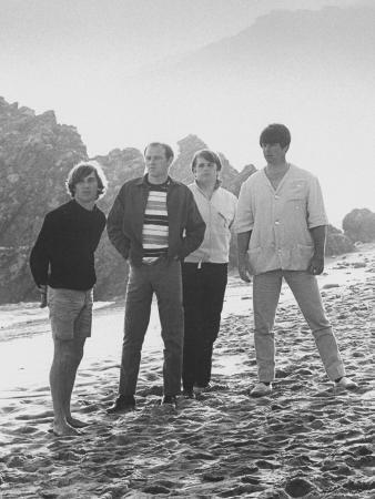 bill-ray-members-of-singing-quartet-the-beach-boys-wilson-mike-love-carl-wilson-brian-wilson