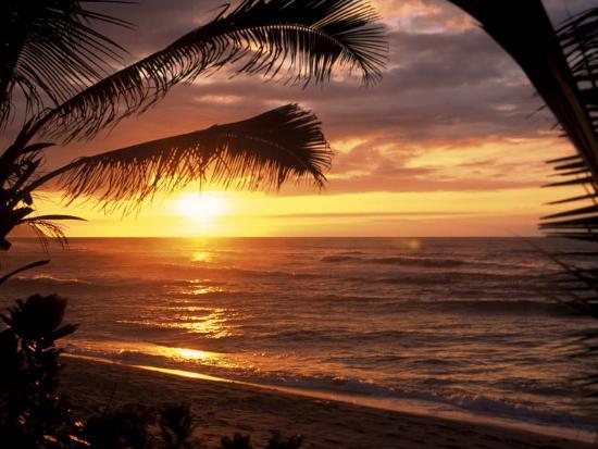 bill-romerhaus-sunset-on-the-ocean-with-palm-trees-oahu-hi