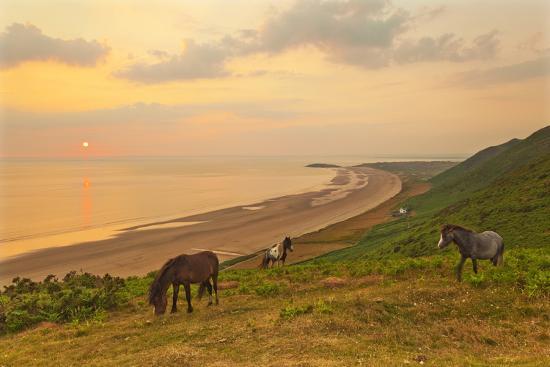 billy-rhossili-bay-gower-peninsula-wales-united-kingdom-europe