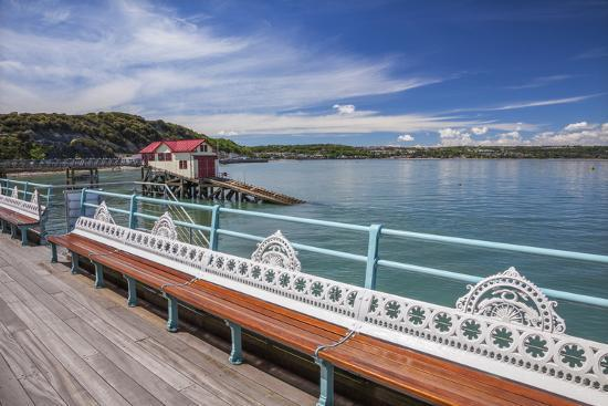 billy-stock-mumbles-pier-mumbles-gower-swansea-wales-united-kingdom-europe