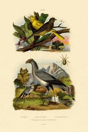 bird-mite-1833-39