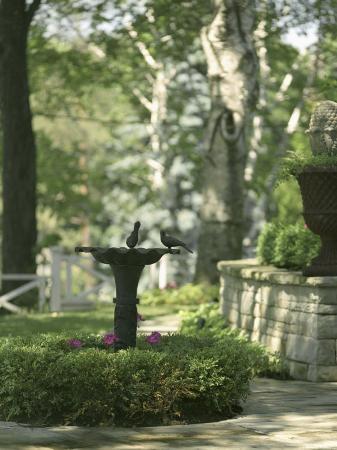 birdbath-and-planter