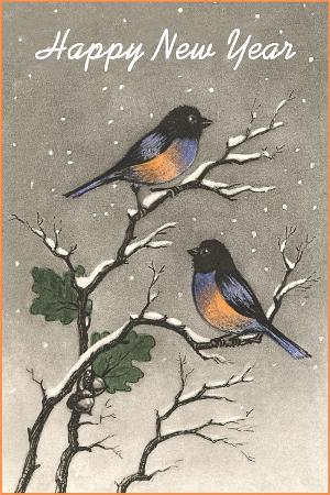 birds-in-snow