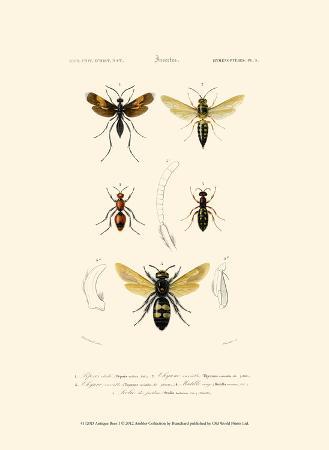 blanchard-antique-bees-i