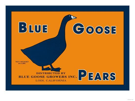 blue goose pears art print at artcouk