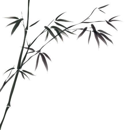 bluesee-chinese-painting-of-bamboo