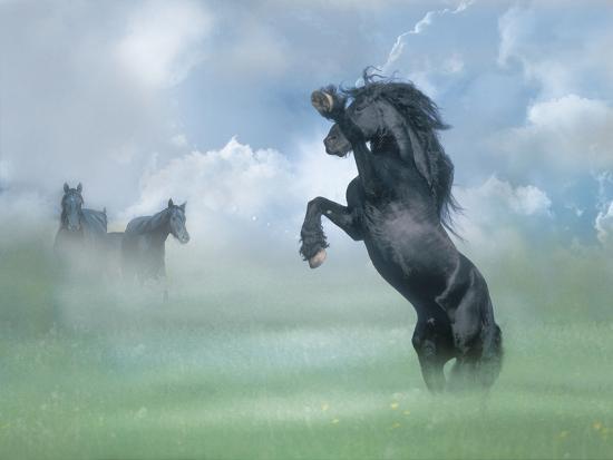 bob-langrish-dream-horses-025