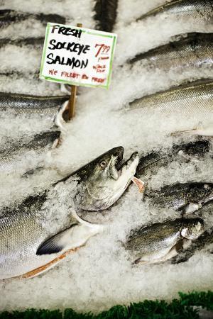 bob-stefko-fresh-seafood-ii