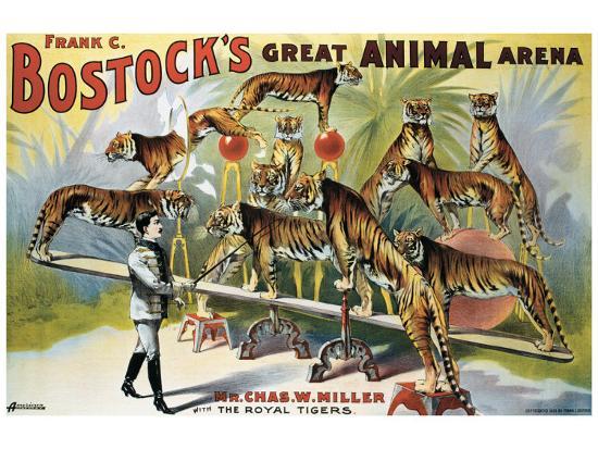 bostock-s-great-animal-arena