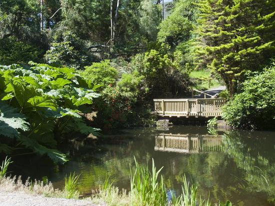 botanical-gardens-at-kells-ring-of-kerry-county-kerry-munster-republic-of-ireland-europe
