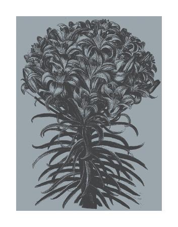 botanical-series-lilies-slate-ink