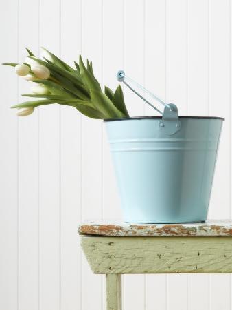 bouquet-of-white-tulips-in-bucket