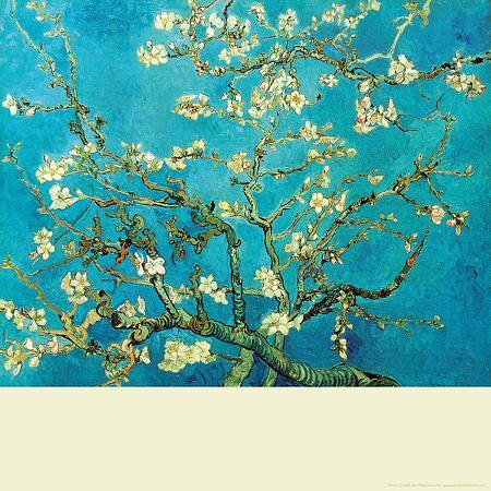 branch-of-an-almond-tree-in-blossom
